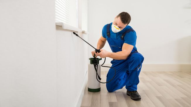 A exterminator killing pests around a home